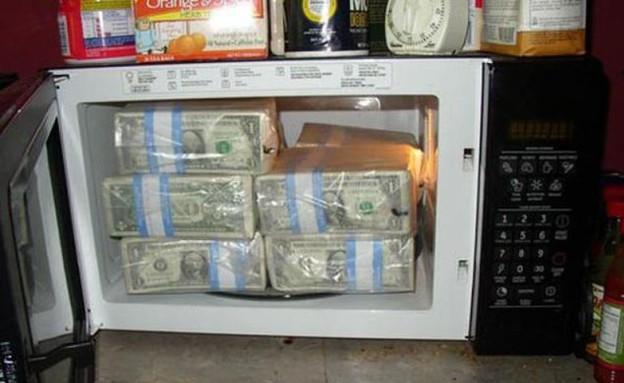 מיליון דולר במיקרוגל (צילום: http://izismile.com)