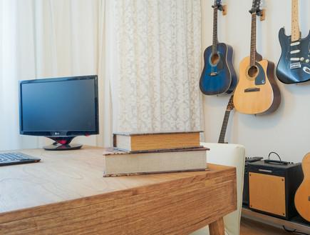 פנטהאוז חלי ישראלי, חדר גיטרות ספרים