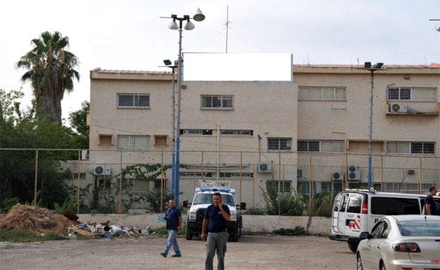 תפיסת המצבור, עפולה (צילום: משטרת ישראל)
