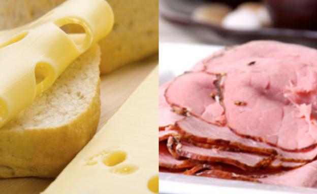 גבינה או פסטרמה? (צילום: Nsaum75, Wikipedia, אוכל טוב)