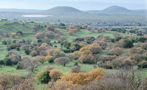 נוף מרכס חזקה (צילום: יותם יעקובסון, גלובס)