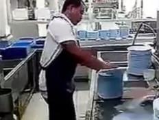 מדיח הכלים האנושי