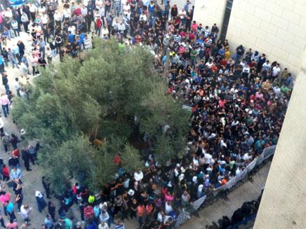 מאות המפגינים מחוץ לבית המשפט, היום