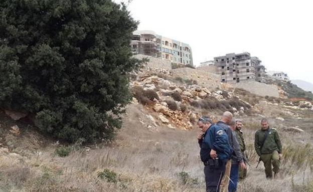 פצמר בגולן (צילום: חדשות 2)