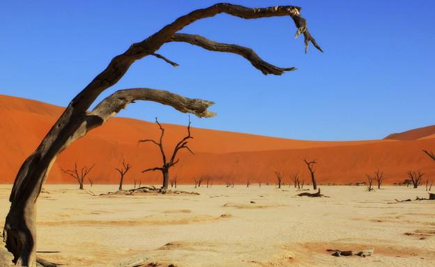 נמיב, נוף סוריאליסטי (צילום: אימג'בנק / Thinkstock)