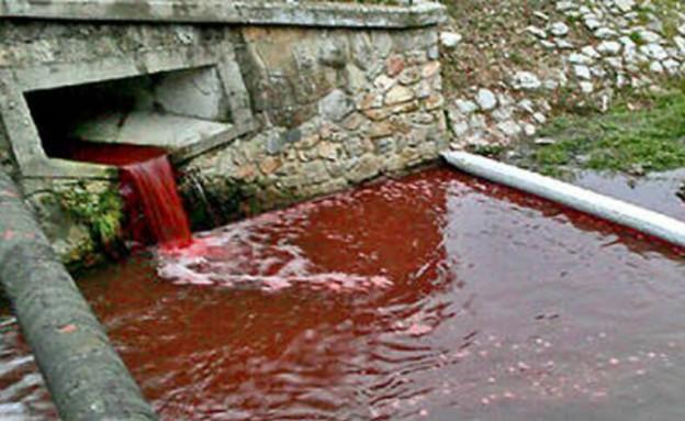 נהר הדם (צילום: dailymail.co.uk)