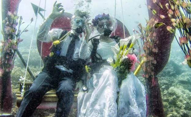 חתונה מתחת למים (צילום: metro.co.uk)