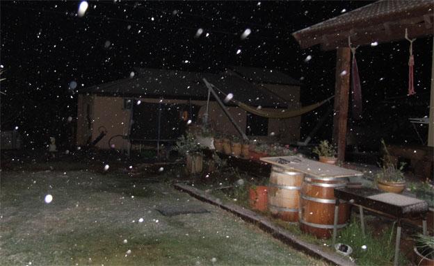 שלג אודם (צילום: חדשות 2)