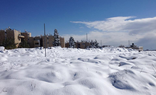שלג בירושלים (צילום: רינת לוי)