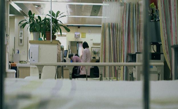 עובדה, אילנה דיין, ניר שחק, שרית מגן (תמונת AVI: mako)