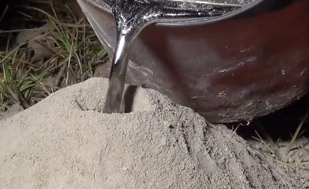 הדברת נמלי אש (צילום: anthillart.com)