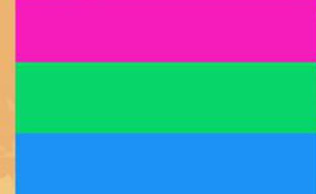 דגל הגאווה - polysexual pride