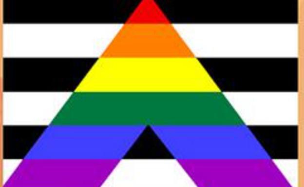 דגל הגאווה - straight alliance
