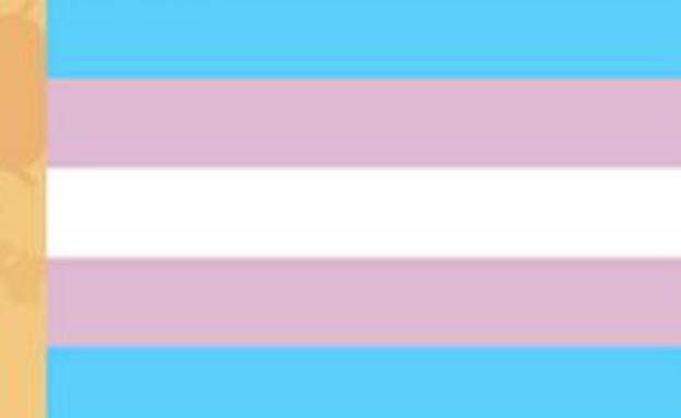 דגל הגאווה - transgender pride