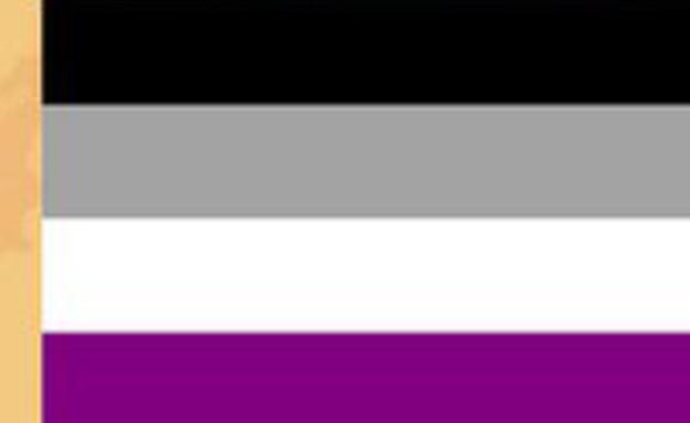 דגל הגאווה - asexual pride