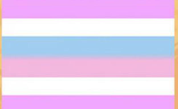 דגל הגאווה - intersexual pride