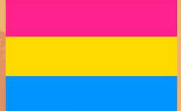 דגל הגאווה - pansexual