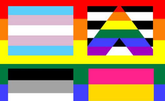 דגלי גאווה