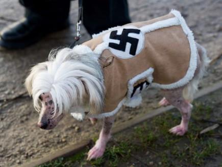 כלב היטלר (צילום: SWNS.com)