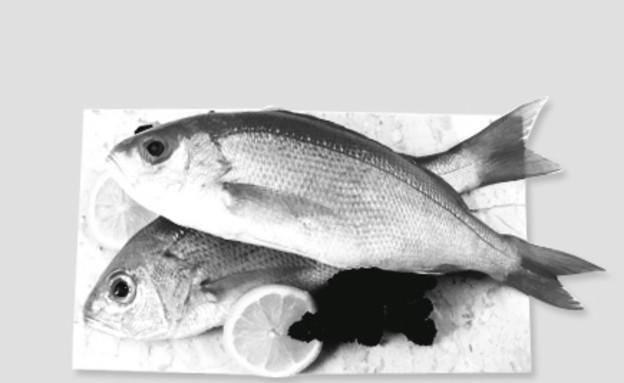 מתכוני גולשים לדגים (צילום: אוכל טוב)