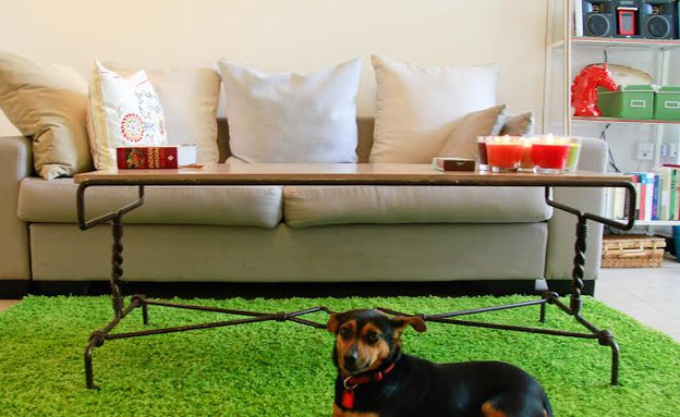 דירה שכורה, שטיח ירוק, אורנה מזור (צילום: איקו פרנקו)