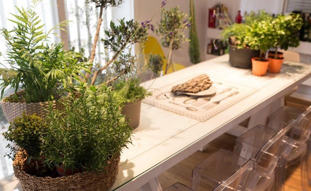 בית טו בשבט, שולחן אוכל (צילום: לימור הרצוג אהרוני)