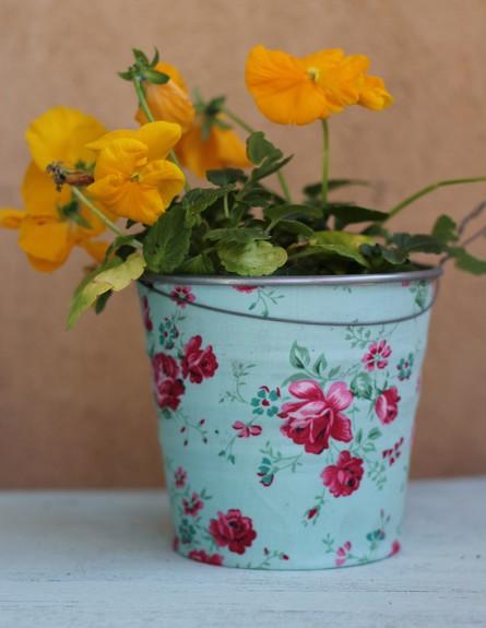 מרפסת, לירון גונן, פרחים