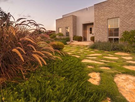 גינות, מיה חצר צמחים, צילום גלעד רדט