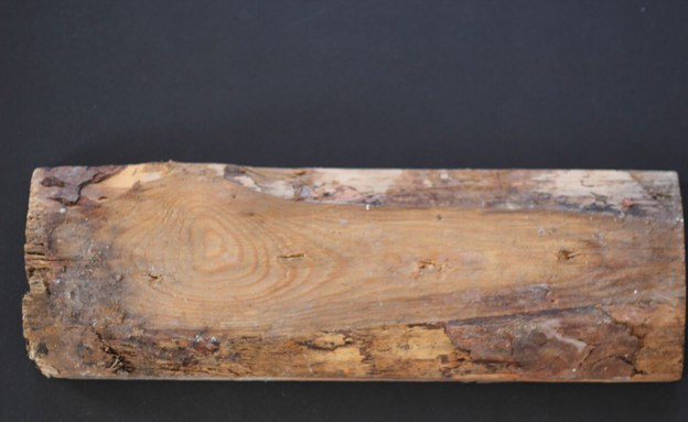 מתלה, חתיכת עץ (צילום: לירון גונן)