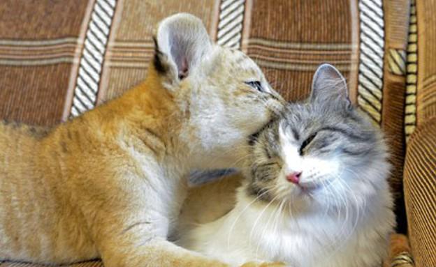 דרקה וקיארה (צילום: Caters News Agency)