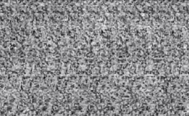 סרטון תלת מימד (צילום: Young Rival )