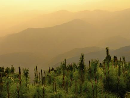צ'אנג ריי, יעדים במזרח (צילום: agoda.com)