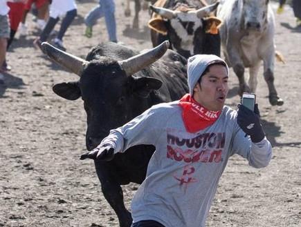 סלפי במירוץ שוורים  (צילום: Houston Press, Derrek Barlow)