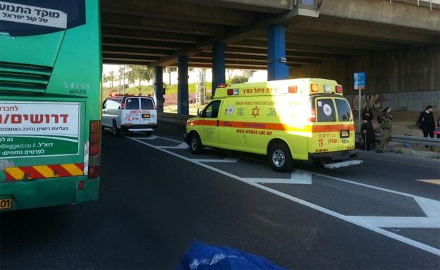 """זירת התאונה הקטלנית בכביש החוף, הבוקר (צילום: דוברות מד""""א)"""