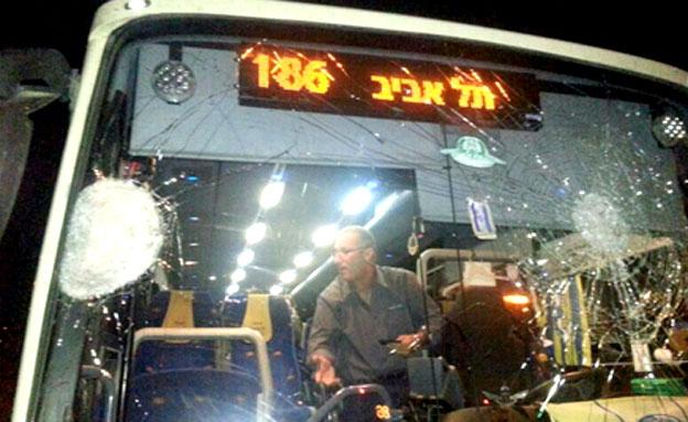 מוקדם יותר: אבנים יודו גם על אוטובוס (צילום: צילום יוחנן לישה)