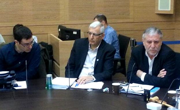 פרופ' מור יוסף בוועדת הכספים (צילום: יוסי זילברמן, חדשות 2)