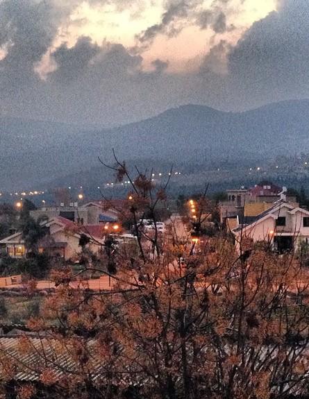 טהוניה רובל (צילום: מתוך האינסטגרם של טהוניה רובל, instagram)