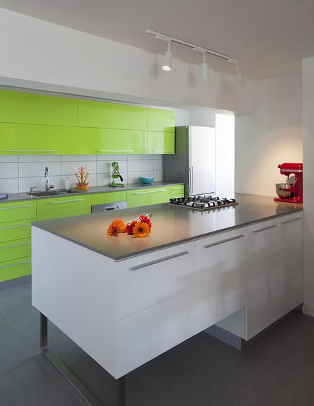 שדרוג בצבע, מטבח ירוק גובה עיצוב פנים ואדריכלות שי (צילום: שי אפשטיין)