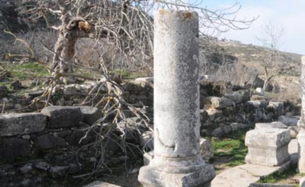בית הכנסת העתיק בנחל גוש חלב (צילום: יותם יעקובסון, גלובס)