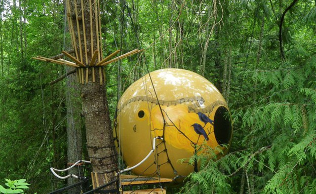 Free Spirit Spheres, קולומביה הבריטית, קנדה (צילום: theguardian.com)