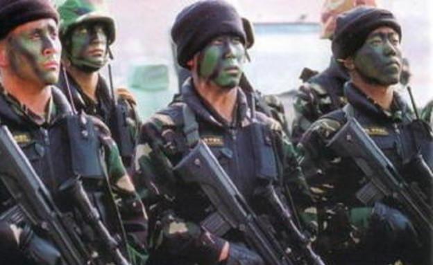צבא אוקראינה (צילום: צבא ארצות הברית)