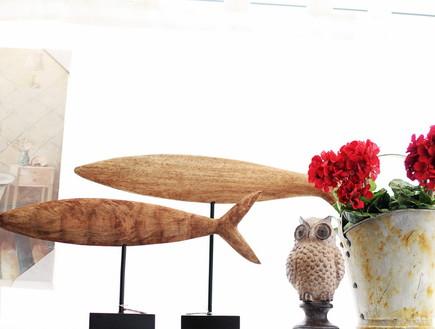 חנויות סודיות, עירית צוקר ריגושים דגים, צילום ניצן הפנר