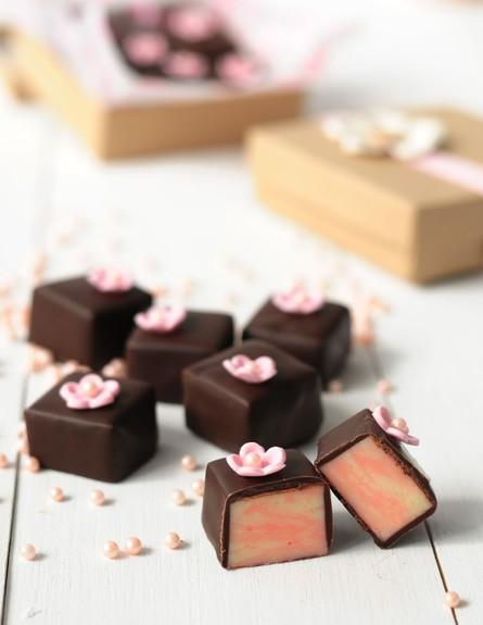 משלוח מנות של מיס פטל - פאדג' שוקולד לבן ותותים