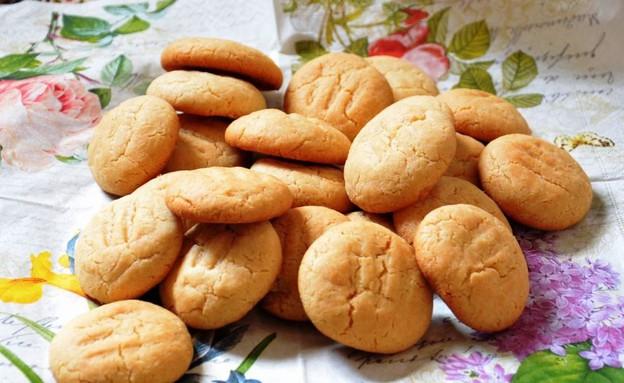 עוגיות וניל וחלב מרוכז (צילום: חני הראל, לימון וג'ינג'ר בלוג אוכל ישראלי)