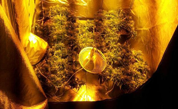 מעבדת הסמים שאותרה במספרה (צילום: באדיבות תחנת שדות)