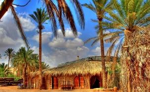החופשה המדברית המושלמת (צילום: אתר כפר הנוקדים)