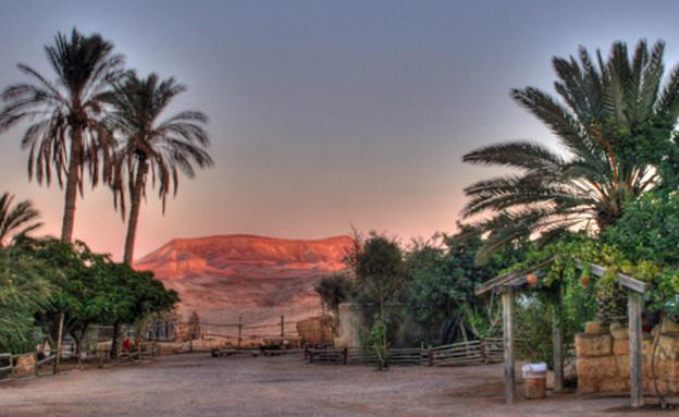 מסביב, טיול כפר הנוקדים, קרדיט אתר כפר הנוקדים (צילום: אתר כפר הנוקדים)