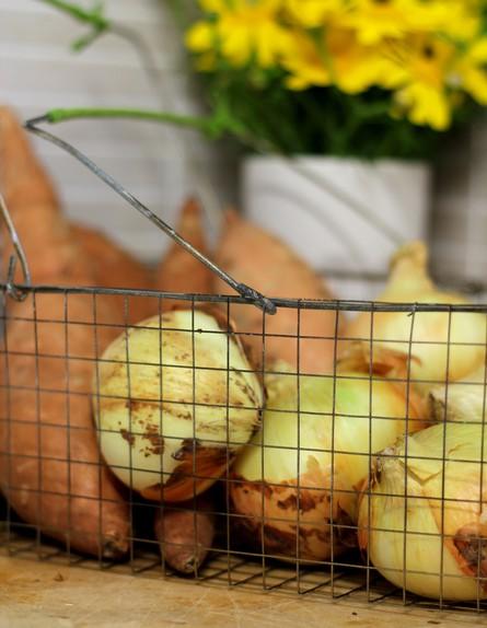 סלסילה, ירקות (צילום: לירון גונן)