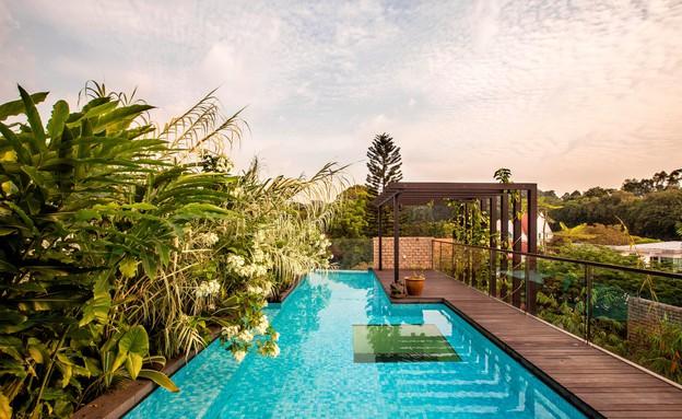 בית חלומות סינגפור, בריכה (צילום: Sanjay Kewlani)