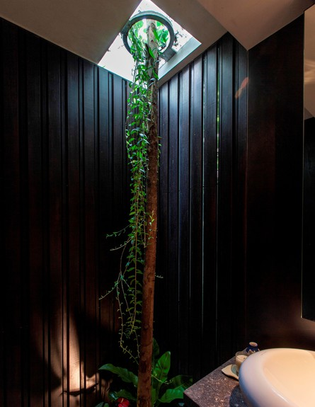 בית חלומות סינגפור, חדר רחצה עמוד גובה (צילום: Sanjay Kewlani)